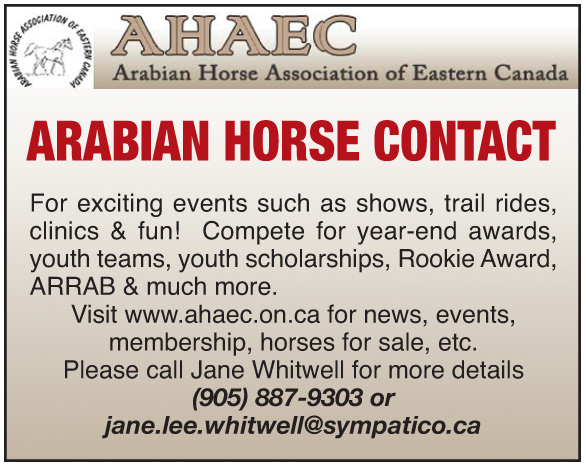 Arabian Horse Association of Eastern Canada