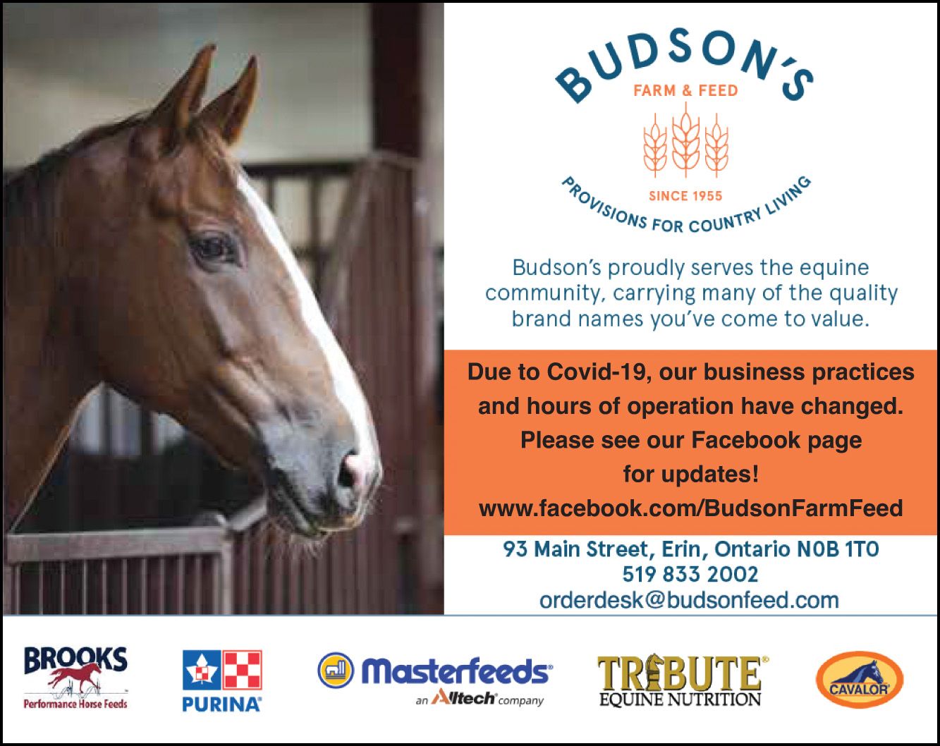 Budson's Feeds
