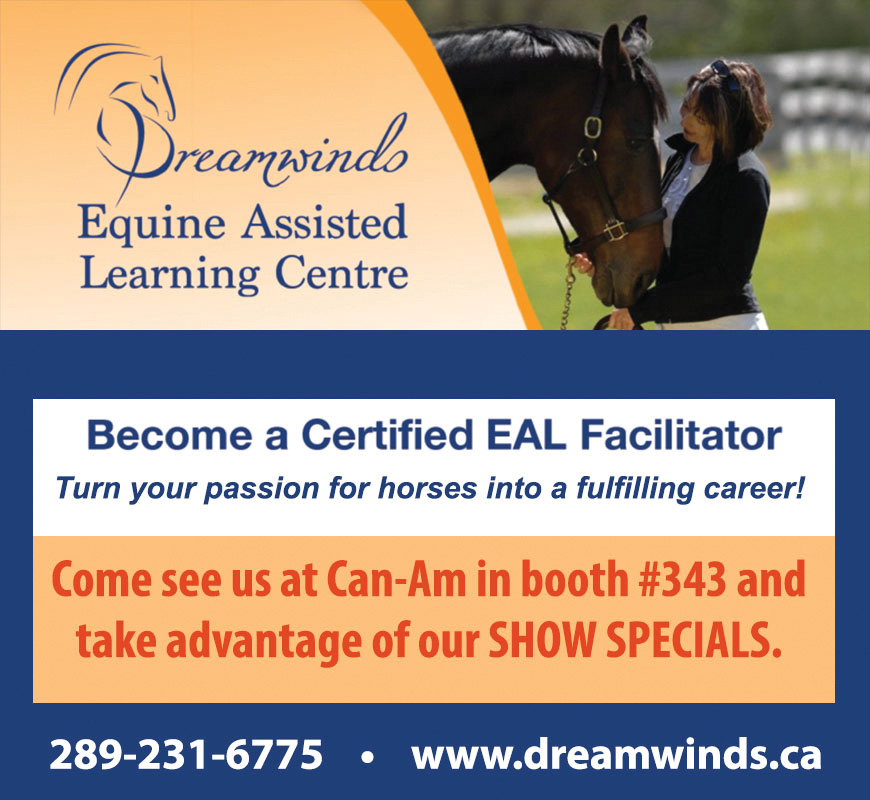 Dreamwinds Equines Assisted Learning Centre