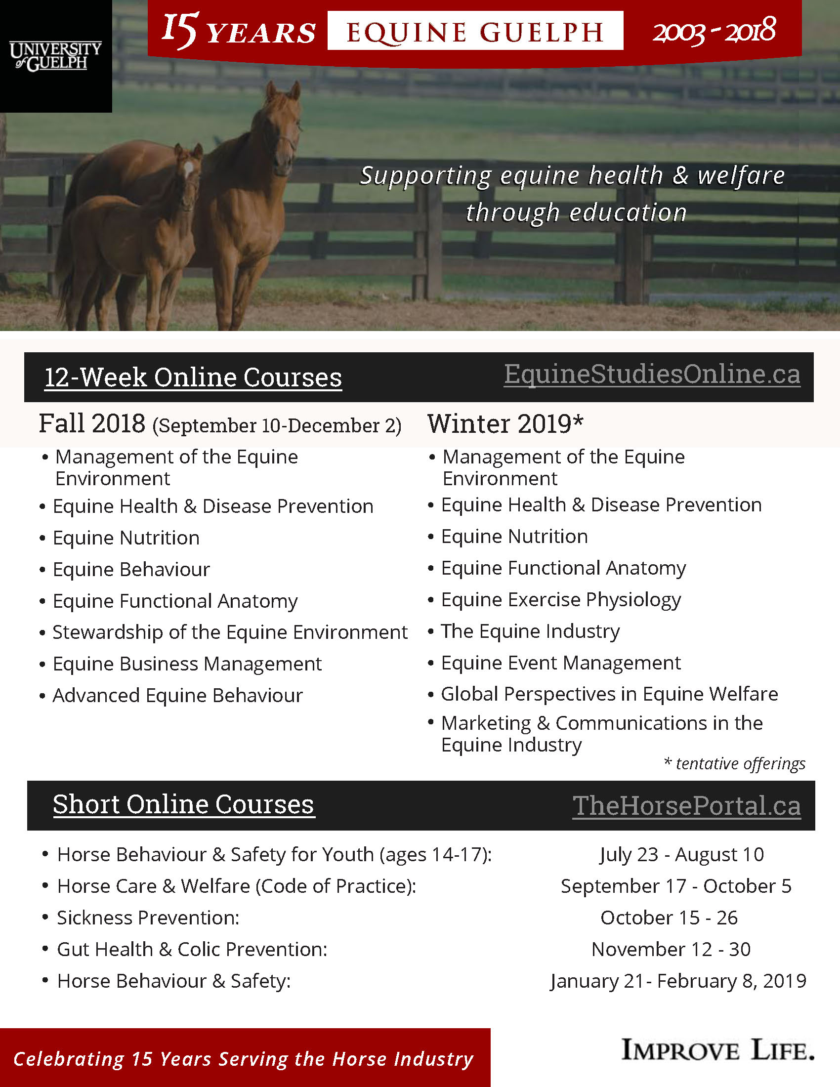 Marketplace | The Rider Equine Newspaper