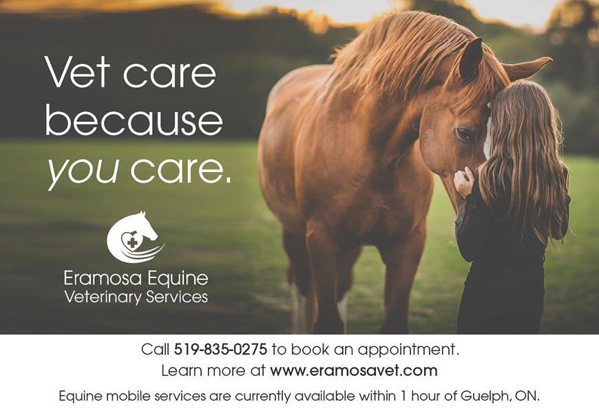 Eramosa Equine Veterinary Services