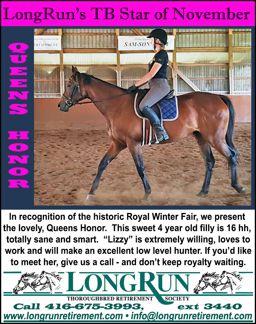 Longrun Thoroughbred Star of the Month