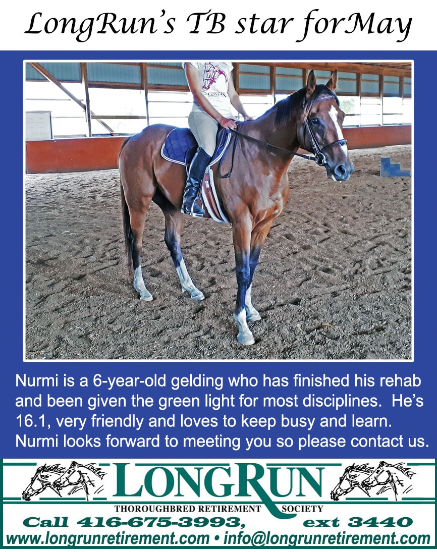 LongRun Thoroughbred Retirement Society