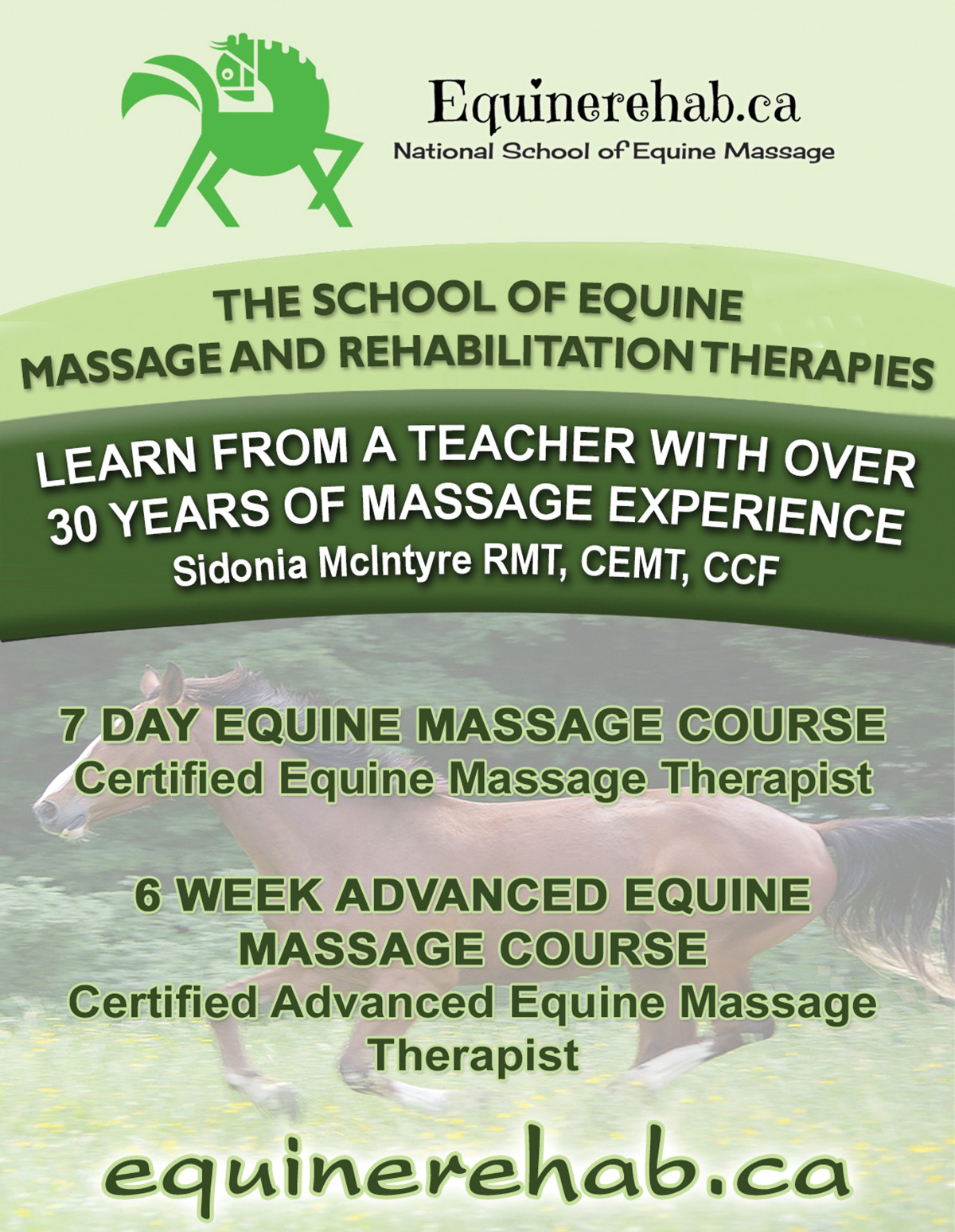 School of Equine Massage & Rehabilitation Therapies