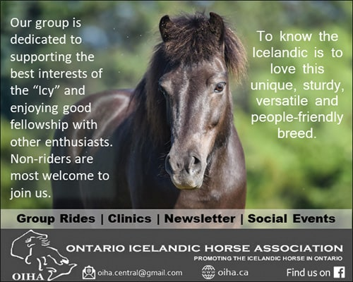 Ontario Icelandic Horse Association