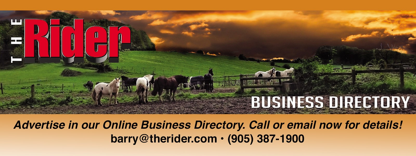 Advertise in The Rider Business Directory