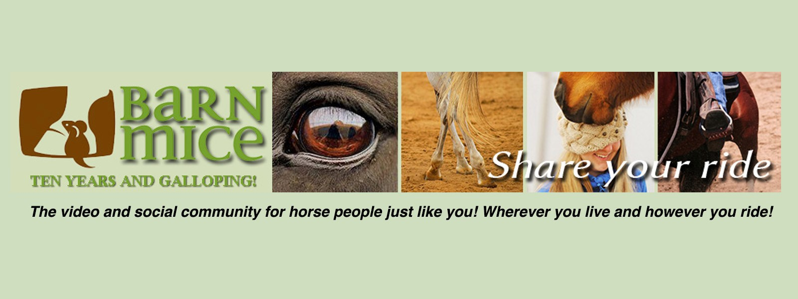 barn mice equestrian community banner