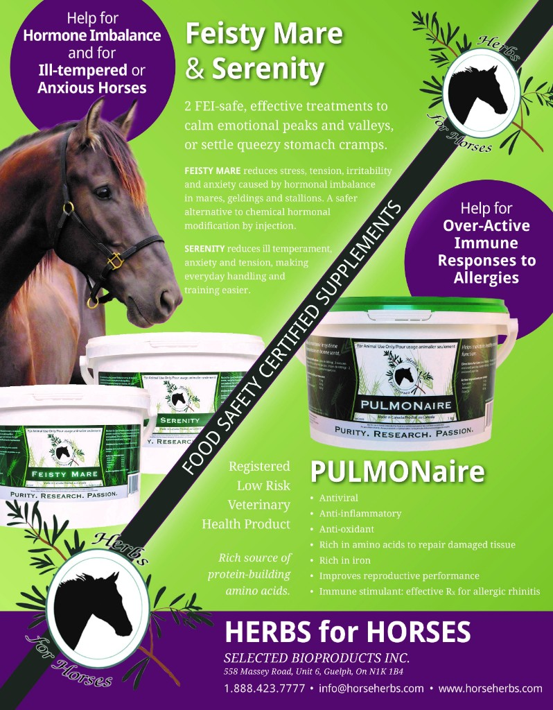 Herbs for Horses Feisty Mare & Serenity
