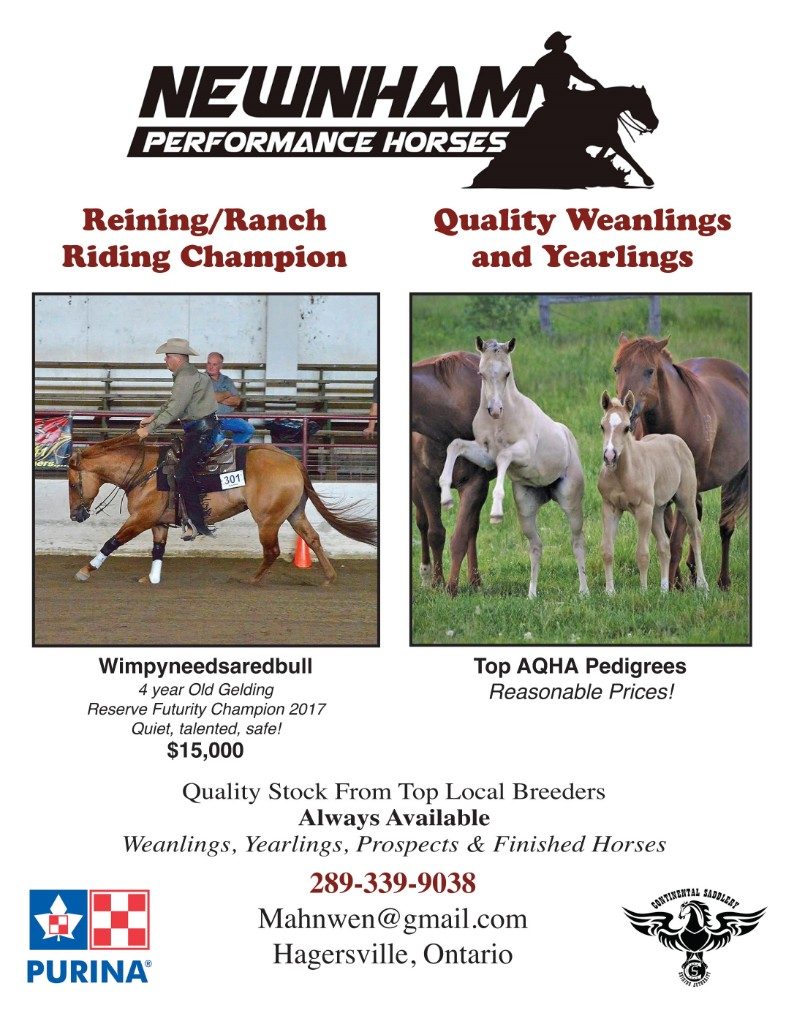 Nenham Performance Horses