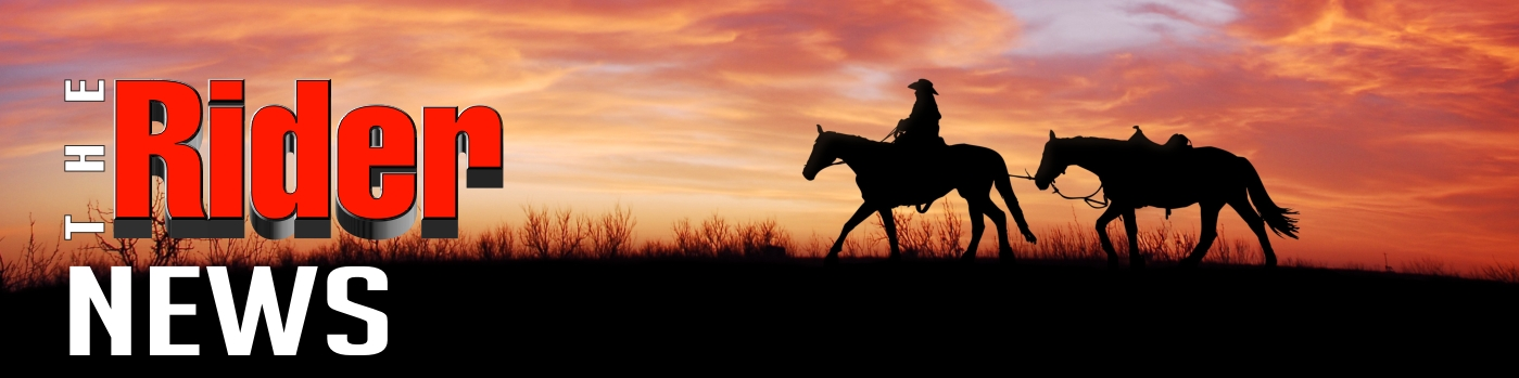 the rider news sunset two horses and a rider