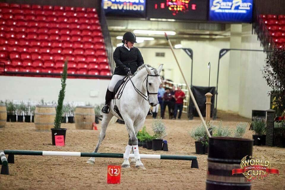 working equitation competition